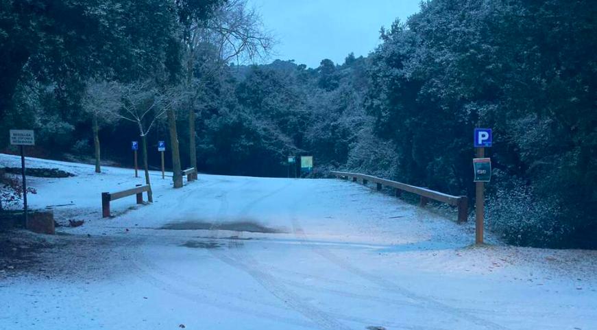 El Parc de Sant Llorenç del Munt i l'Obac, al Vallès, nevat / Toni Garcia / Món Terrassa