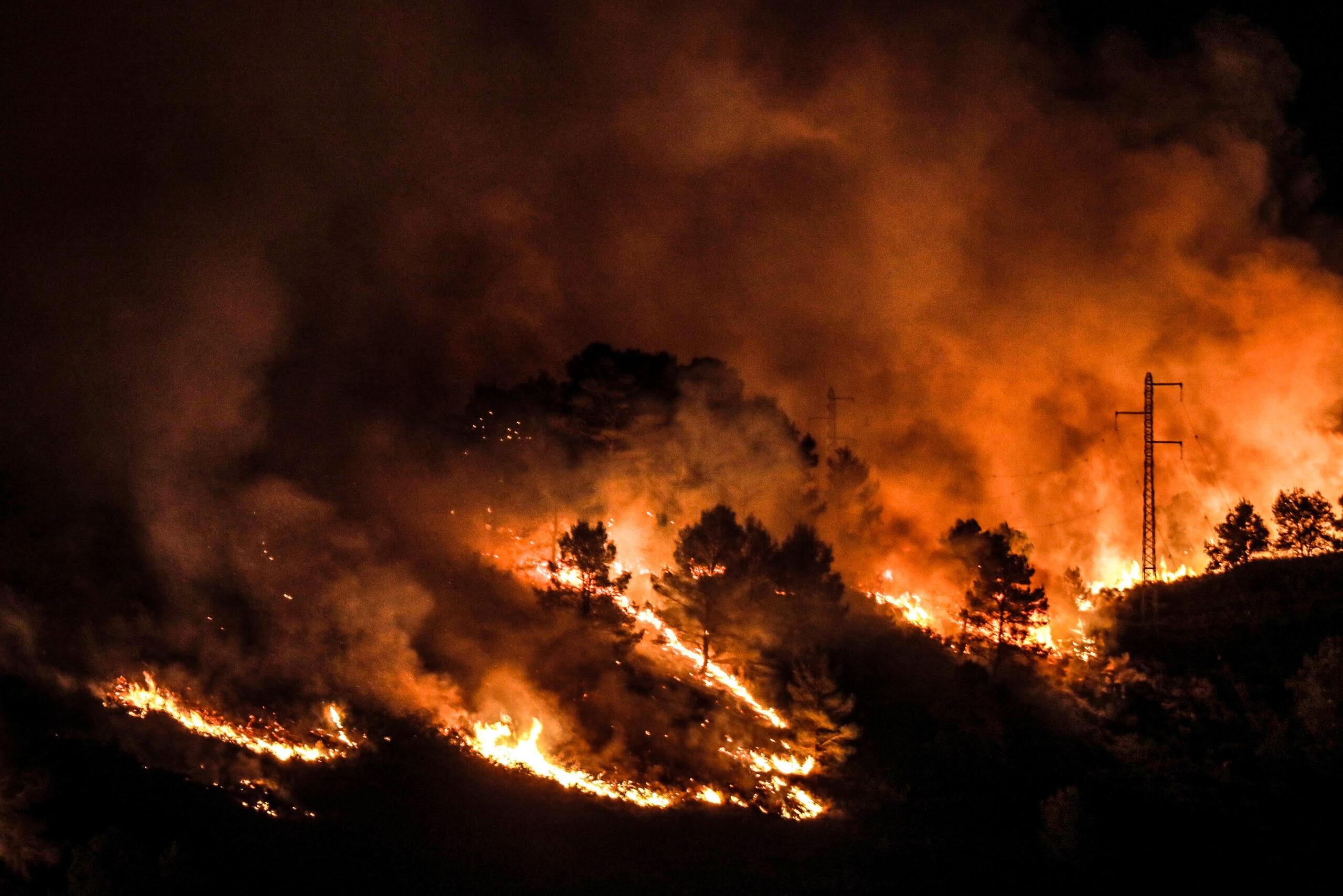 L'incendi del massis del Montgrí / JORDI BORRÀS
