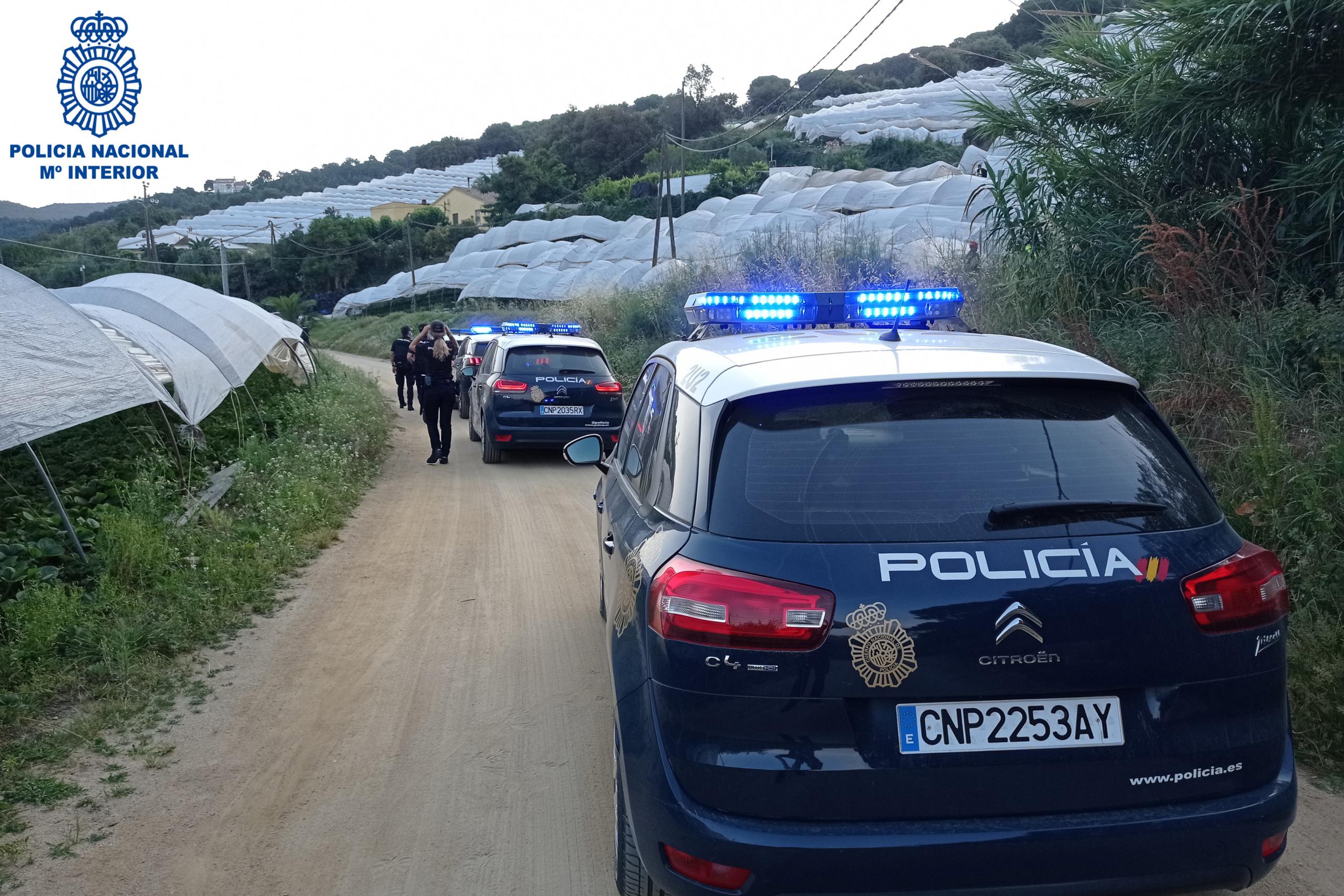Diversos cotxes de la Policia Nacional durant un operatiu per desmantellar una trama de contractació fraudulenta / ACN